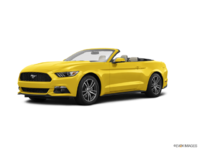 2016 Ford Mustang Convertible EcoBoost Premium | Photo 3 | Triple Yellow