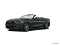 2016 Ford Mustang Convertible EcoBoost Premium | Photo 3 | Guard