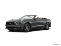 2016 Ford Mustang Convertible EcoBoost Premium | Photo 3 | Magnetic