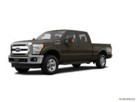 2016 Ford Super Duty F-250 XLT | Photo 3 | Caribou