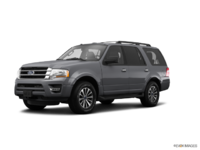 2017 Ford Expedition XLT | Photo 3 | Magnetic Metallic
