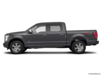 2017 Ford F-150 PLATINUM | Photo 1 | Magnetic