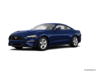 2018 Ford Mustang EcoBoost Fastback | Photo 3 | Kona Blue
