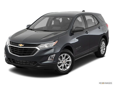 Chevrolet Equinox LS 2019 - photo 2