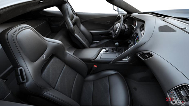 Jet Black Leather w/Sueded Microfibre Inserts