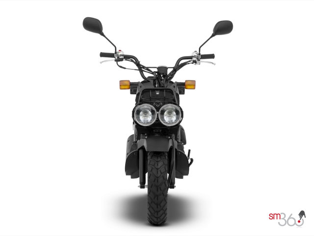 STANDARD Honda RUCKUS 2018 for sale in | Leggat Auto Group