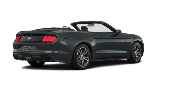 2016 Ford Mustang Convertible EcoBoost Premium | Photo 5 | Guard