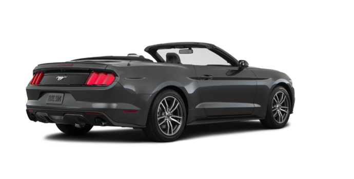 2016 Ford Mustang Convertible EcoBoost Premium | Photo 5 | Magnetic