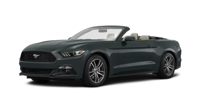 2016 Ford Mustang Convertible EcoBoost Premium | Photo 6 | Guard