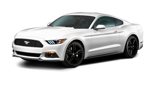 2016 Ford Mustang EcoBoost Premium | Photo 6 | Oxford White