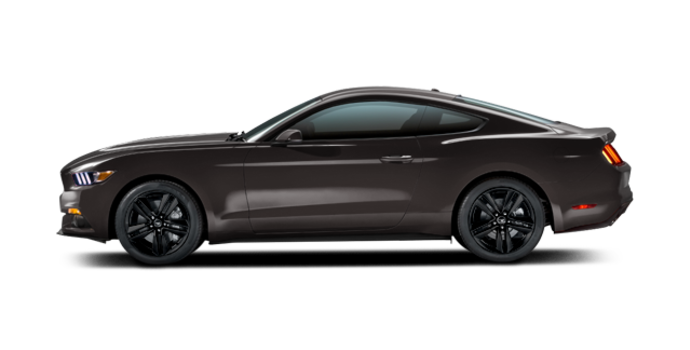 2016 Ford Mustang EcoBoost Premium | Photo 4 | Magnetic