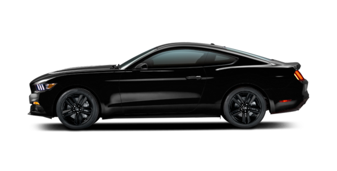 2016 Ford Mustang EcoBoost Premium | Photo 4 | Shadow Black