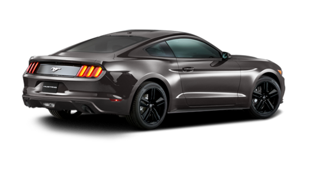 2016 Ford Mustang EcoBoost | Photo 5 | Magnetic