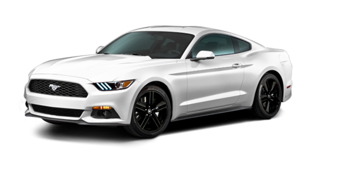 2016 Ford Mustang EcoBoost | Photo 6 | Oxford White