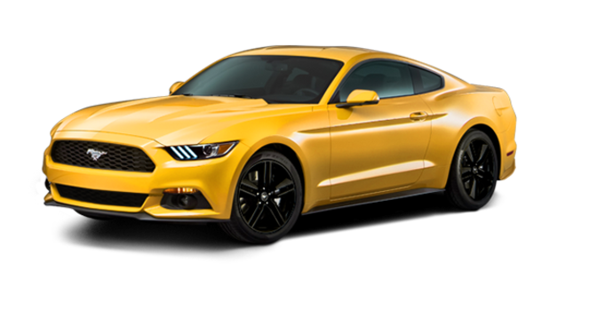 2016 Ford Mustang EcoBoost | Photo 6 | Triple Yellow