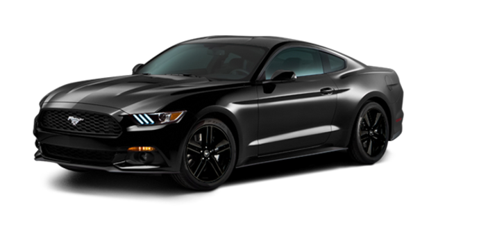 2016 Ford Mustang EcoBoost | Photo 6 | Shadow Black