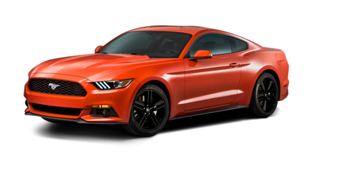 2016 Ford Mustang EcoBoost | Photo 6 | Competition Orange