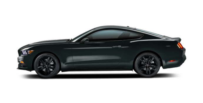 2016 Ford Mustang EcoBoost | Photo 4 | Guard