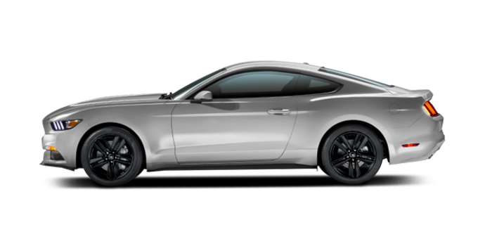 2016 Ford Mustang EcoBoost | Photo 4 | Ingot Silver