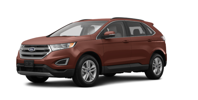 2017 Ford Edge SEL | Photo 6 | Canyon Ridge Metallic
