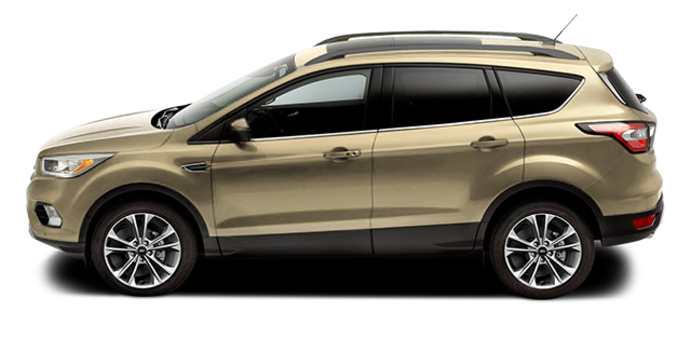 2017 Ford Escape SE | Photo 4 | White Gold
