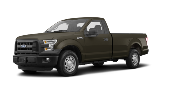 2017 Ford F-150 XL | Photo 6 | Caribou