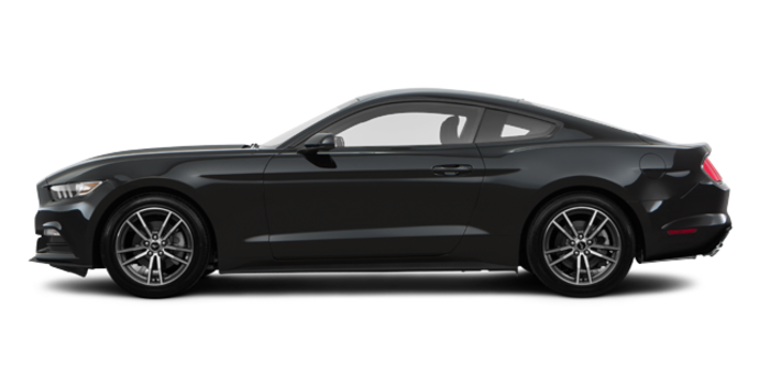 2017 Ford Mustang EcoBoost | Photo 4 | Shadow Black