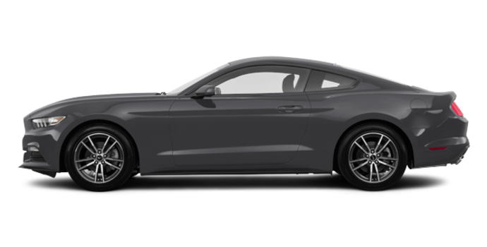 2017 Ford Mustang EcoBoost | Photo 4 | Magnetic