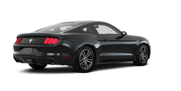 2017 Ford Mustang EcoBoost | Photo 5 | Shadow Black