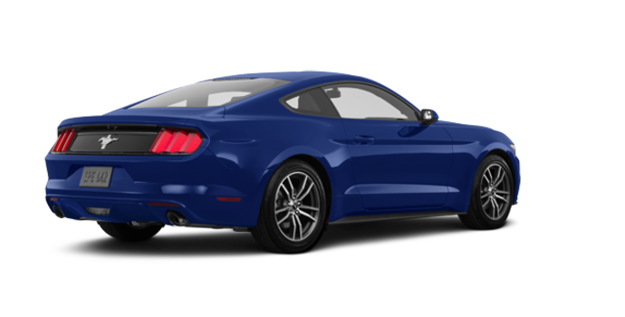 2017 Ford Mustang EcoBoost | Photo 5 | Lightning Blue