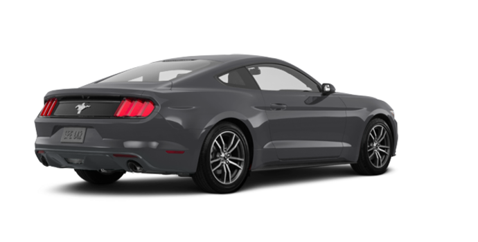 2017 Ford Mustang EcoBoost | Photo 5 | Magnetic