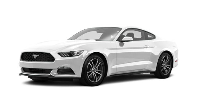 2017 Ford Mustang EcoBoost | Photo 6 | White Platinum