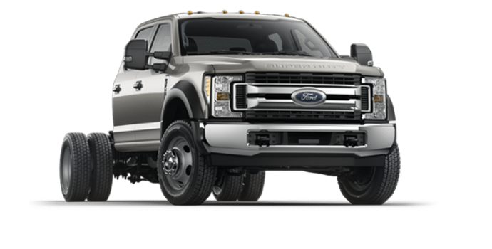 2018 Ford Chassis Cab F-450 XLT | Photo 6 | Stone Gray