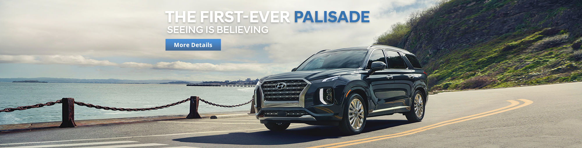 Introducing the first-ever PALISADE