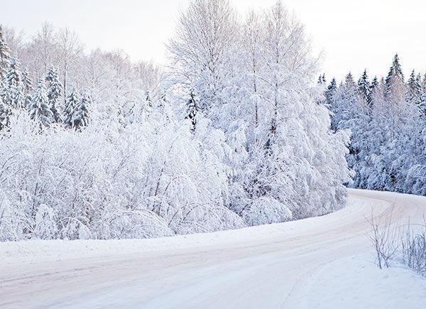 BG-RIGHT-winter
