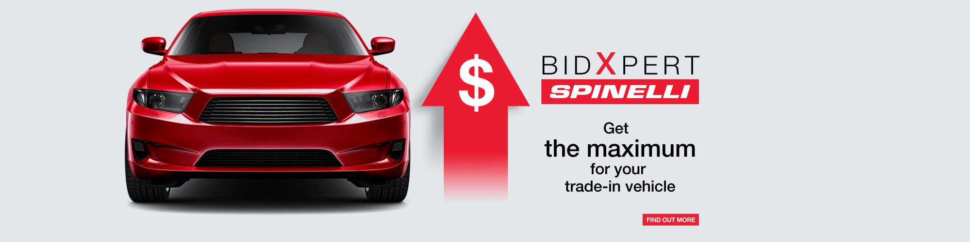 Spinelli BidXpert