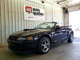Ford Mustang GT Décapotable  V8 4.6L  40ème Anniversaire 2004 Jamais sorti l hiver / Garantie 1 An ou 15 000 km GMP / Inclus
