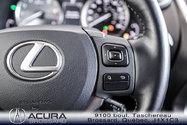 2017 Lexus NX 200t Lux Pkg