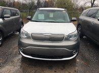 2019 Kia SOUL EV EV Luxury