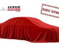 2017 Lexus NX 200t F SPORT II AWD; TOIT GPS AUDIO