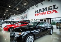 Directeur des ventes véhicules neufs