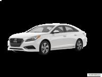 2016 Hyundai Sonata Plug-in Hybrid ULTIMATE   Photo 3   Ice White