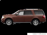 2017 Ford Expedition PLATINUM | Photo 1 | Bronze Fire Metallic