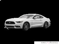 2017 Ford Mustang EcoBoost Premium | Photo 3 | White Platinum
