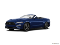 2018 Ford Mustang Convertible EcoBoost | Photo 3 | Kona Blue