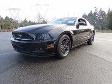 2014 Ford Mustang V6  -  Fog Lamps