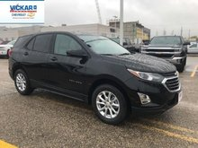 2019 Chevrolet Equinox LS  - $198.19 B/W