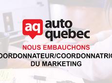 Coordonnateur/coordonnatrice du marketing