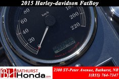 2015 Harley-Davidson FatBoy