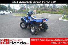 Kawasaki Brute Force 750 2014